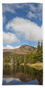 Wildlife Pond - Bethlehem New Hampshire Usa Bath Towel
