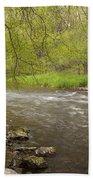 Willow River 3 Bath Towel