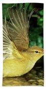 Willow Warbler Phylloscopus Trochilus Bath Towel