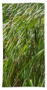 Windswept Cattails Bath Towel