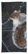 Windy Winter Day Bath Towel