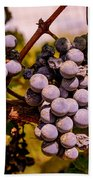 Wine Grapes On The Vine Bath Towel
