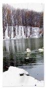 Winter At Oakland Lake Bath Towel