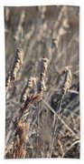 Winter Cattail Abstract Bath Towel