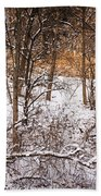 Winter Forest Hand Towel by Elena Elisseeva