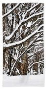 Winter Landscape Hand Towel