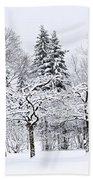 Winter Park Landscape Bath Towel