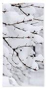 Winter Park Under Heavy Snow Hand Towel