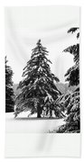Winter Pines Hand Towel