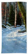 Winter Road Hand Towel