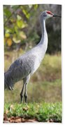 Winter Sandhill Crane Bath Towel