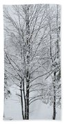 Winter Scene Bath Towel