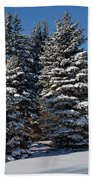 Winter Scenic Landscape Bath Towel
