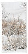 Winter Solitude Bath Towel