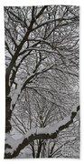 Winter Tree Bath Towel