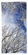 Winter Trees And Blue Sky Bath Towel
