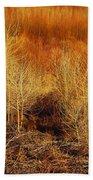 Winter Trees Color 3 Bath Towel