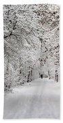 Winter Walk In Fairytale  Bath Towel