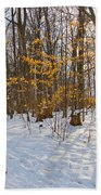 Winter Walk Bath Towel
