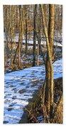 Winter Woods Walk Bath Towel