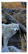 Wolf In The Wild Bath Towel