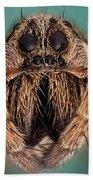 Wolf Spider 5x Bath Towel
