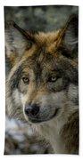Wolf Upclose 2 Bath Towel