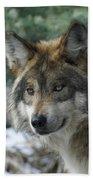 Wolf Upclose Bath Towel