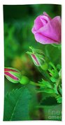 Wood Rose Buds Rosa Woodsii Wild Bath Towel