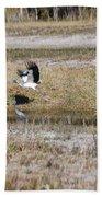 Wood Stork And Herons Bath Towel