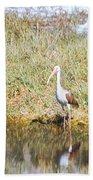 Wood Stork And Ibis And Heron Bath Towel