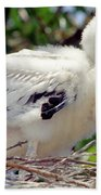 Wood Stork Nestling Bath Towel