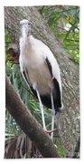 Wood Stork On A Limp Bath Towel
