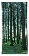 Woodland Scene In Gougane Barra Forest Bath Towel