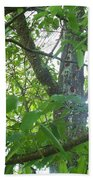 Woodpecker Tree Art Bath Towel