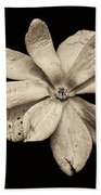 Wounded White Magnolia Wide Version Sepia Bath Towel