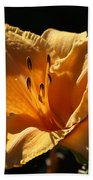 Yellow And Cream Day Lily Bath Towel