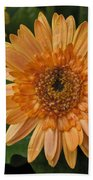 Yellow And Peach Daisy Bath Towel