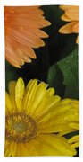 Yellow And Peach Hand Towel