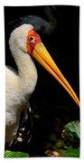 Yellow Billed Stork Peers At Camera Bath Towel