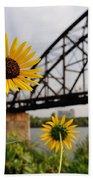 Yellow Cone Flowers And Bridge Bath Towel