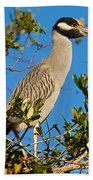 Yellow Crown Night Heron Bath Towel