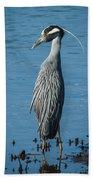 Yellow-crowned Night-heron Bath Towel