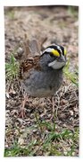 Yellow Crowned Sparrow Bath Towel