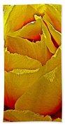 Yellow Engelmann Prickly Pear On Chihuahuan Desert Trail In Big Bend National Park-texas   Bath Towel