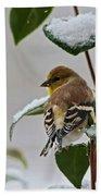 Goldfinch On Branch Bath Towel
