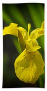 Yellow Flag Flower Outdoors Bath Towel