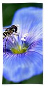 Blue Flax Flower Bath Towel