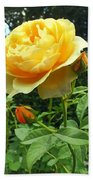 Yellow Rose And Buds Bath Towel