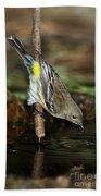 Yellow-rumped Warbler Drinking Bath Towel